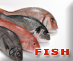 seatradegroup products,fish,Polagics: Mackerel - Horse Mackerel - Herrings - Sardines - Tilapia - Silver Hake - Silver Smelt - Grey Mullet